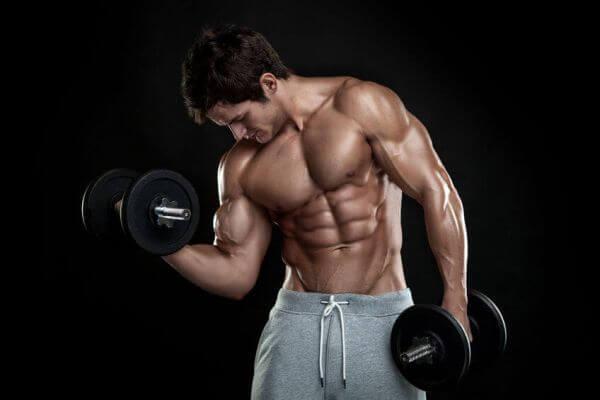 les entraînements du biceps qui garantissent de gros bras