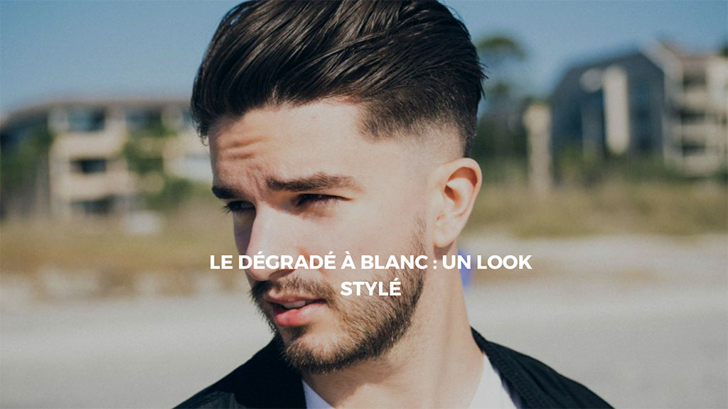 style-dégradé-à-blanc