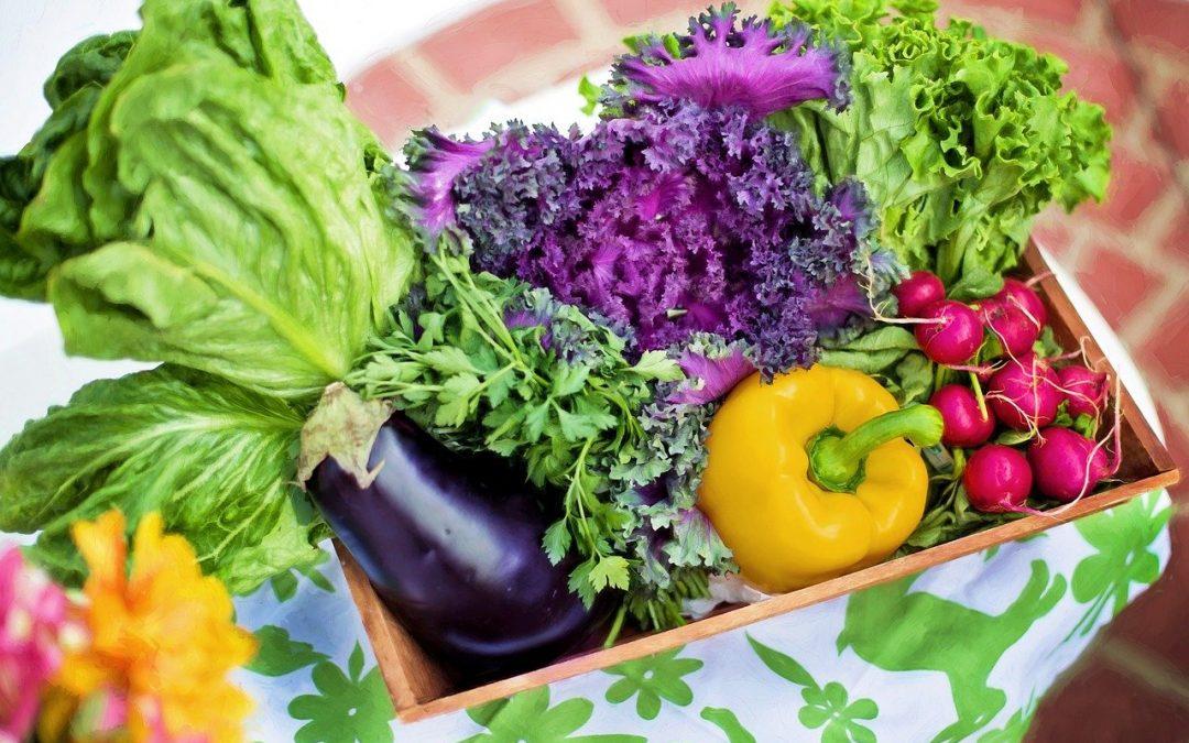 Quel doit être votre régime alimentaire à 50 ans et plus ?